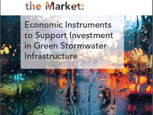 Working With the Market: Economic Instruments to Support Investment in Green Stormwater Infrastructure