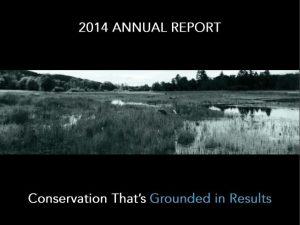 Annual Report (2014)