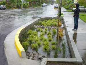 5 Takeaways on Creating Incentives for Natural Stormwater Infrastructure