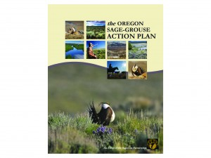 The Road Ahead for the Not-Listed Sage-Grouse