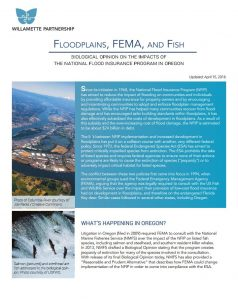 floodplains, fema, fish, Biological Opinion on the Impacts of the National Flood Insurance Program in Oregon