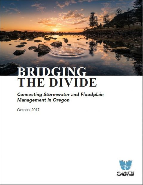 stormwater and floodplain management bridging the divide report cover
