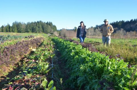 Oregon's Bounty, conservation on farms