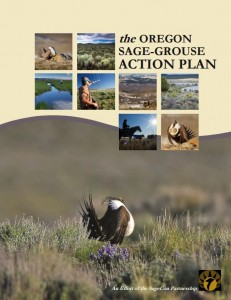 Oregon's Sage-Grouse Action Plan provides a coordinated framework for action and accountability among private, nongovernmental, local, State, and federal partners in advancing immediate and long-term efforts.