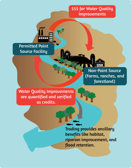 Water quality trading graphic Willamette Partnership