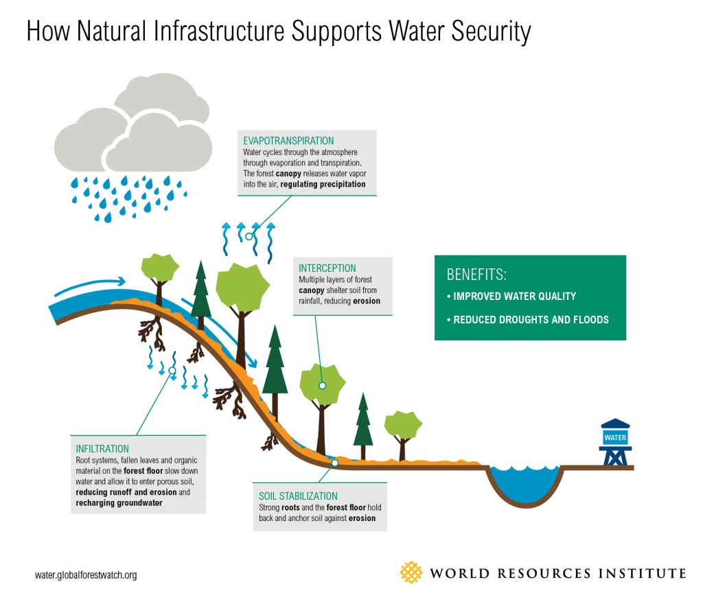 Watersheds are a natural infrastructure system that filters stormwater runoff, recharges groundwater, and slows erosion. Graphic courtesy of World Resources Institute.