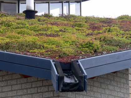 Webcast: Working with the Market for Green Stormwater Infrastructure