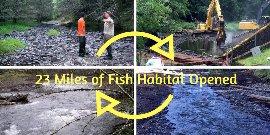 fish passage trask river willamette partnership graphic