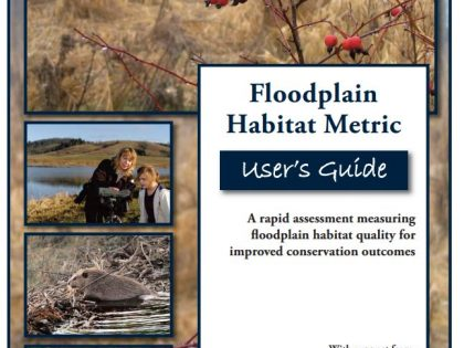 Floodplain Habitat Metric User's Guide