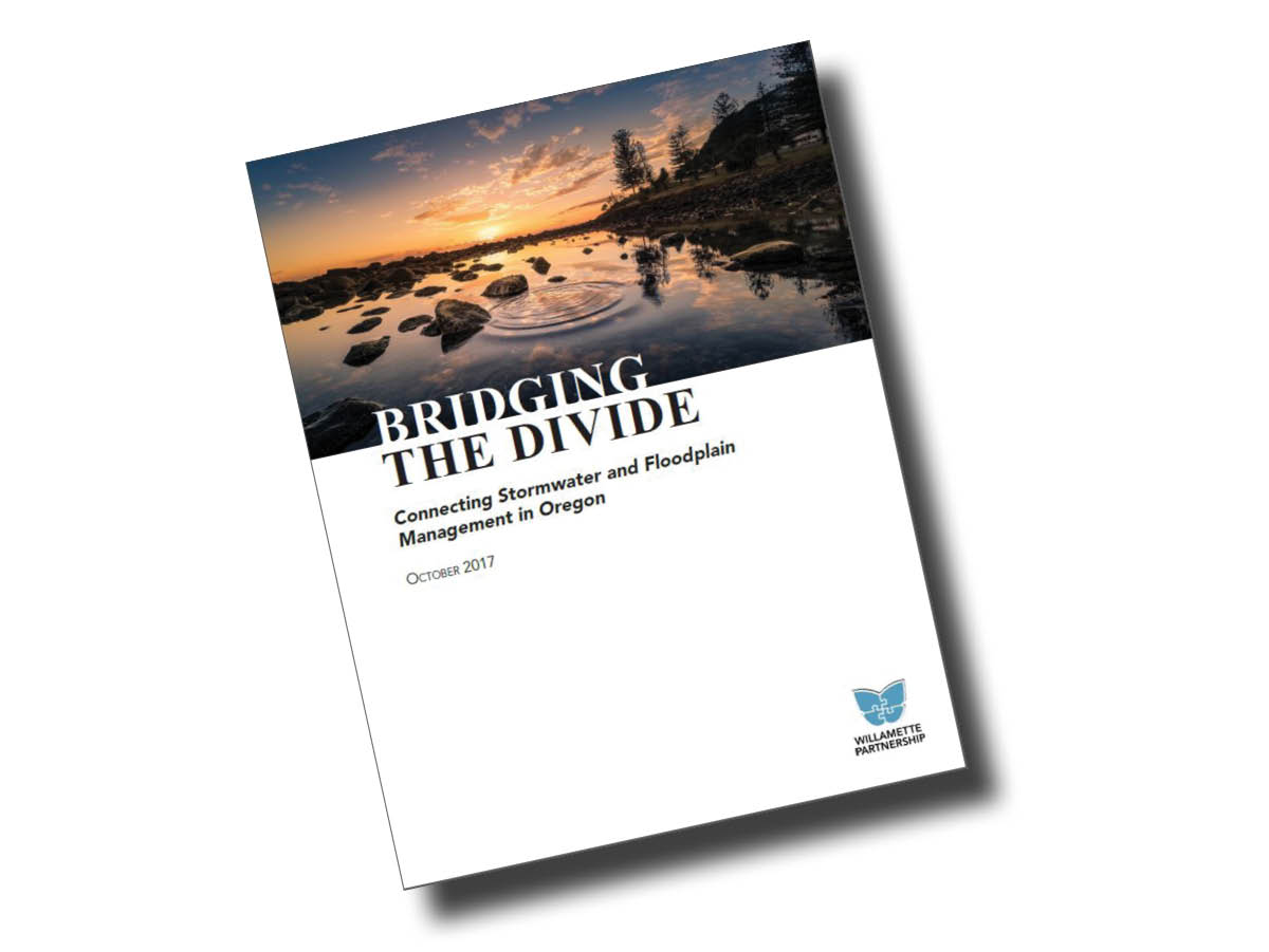 Bridging the Divide report cover_tilt