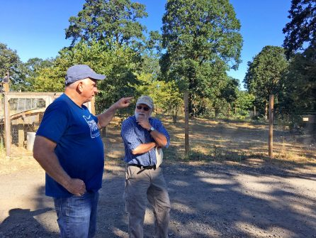 oak accord baseline assessments