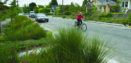 green infrastructure and health