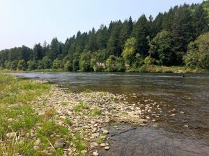 Willamette Confluence River Restoration Photo Story