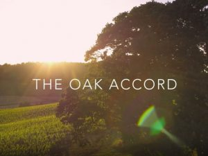 Collective Action: The Story of the Oak Accord