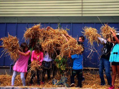 Nature to Bridge Childhood Education Gap