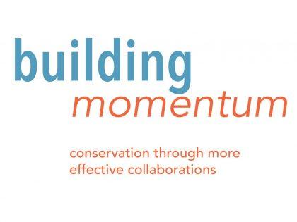 Building Momentum 2019