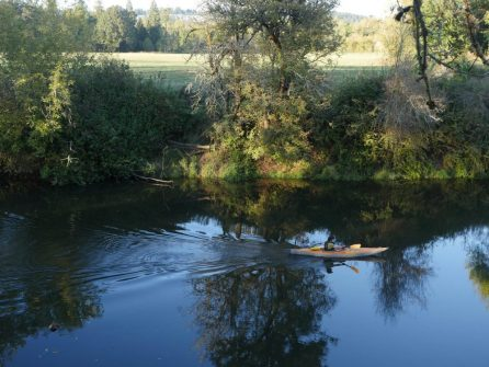 Kayaker on the Tualatin River